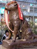 Hachiko el perro fiel. Th_88181_2_123_243lo