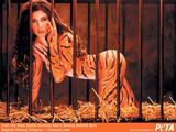 Patricia Manterola Dуnde quedу la bolita (1992) (as Garibaldi) Foto 31 (Патриция Мантерола Dуnde quedу La bolita (1992) (как Гарибальди) Фото 31)